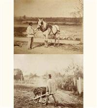 études d'après nature [le cheval - la brouette] (2 works) by achille quinet